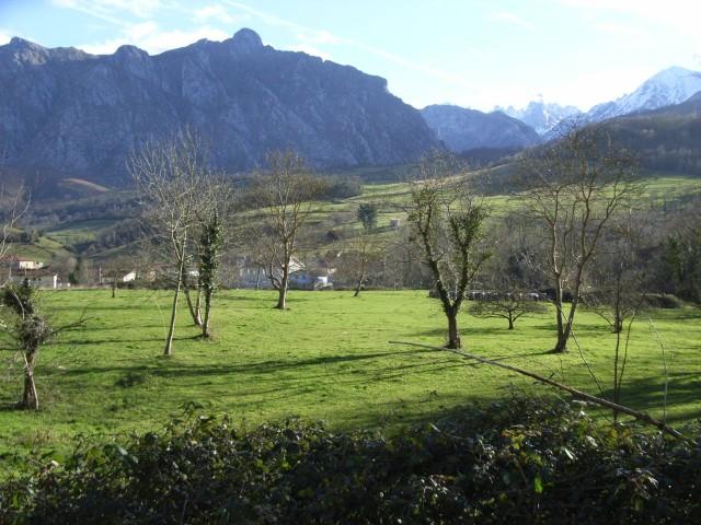 Desde casa - Avín (Onís)